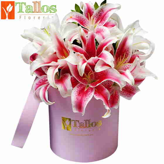 box rosado con liliums para delivery